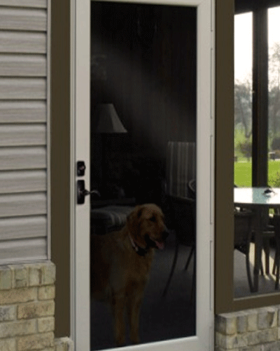 Storm Doors, Replacement Storm Doors, Home Storm Doors, Storm Door Installation